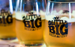Episode 116: Little Big Beer Fest 2017